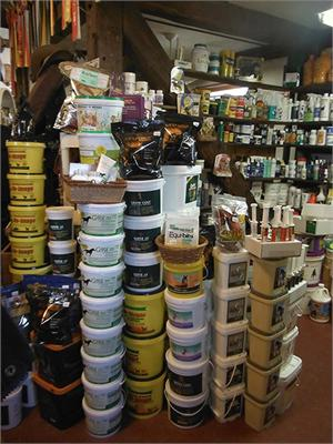 Horse Supplements & Nutrition